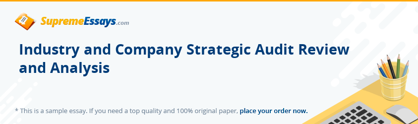 Industry and Company Strategic Audit Review and Analysis