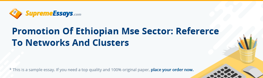Promotion Of Ethiopian Mse Sector: Refererce To Networks And Clusters