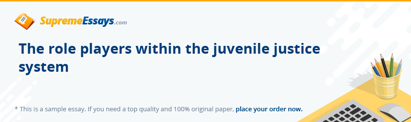 The role players within the juvenile justice system